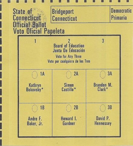 Dem boe ballot