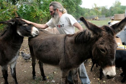Chris Toole and donkeys
